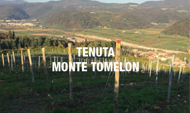 Tenuta Monte Tomelon - Cristiana Collection